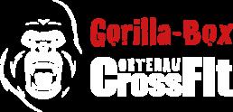 Gorilla-Box | CrossFit Ortenau in Schutterwald bei Offenburg
